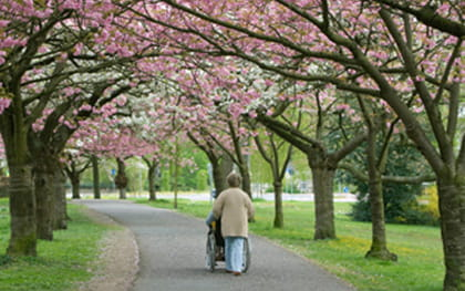 Caregiver pushing Hospice patient in wheelchair through park